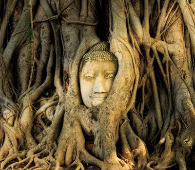 Buddha_Head_2